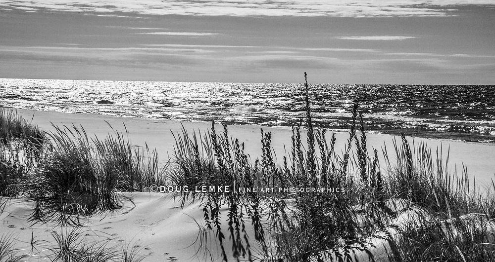 Backlit Beach Scene, Little Sable Point, Michigan