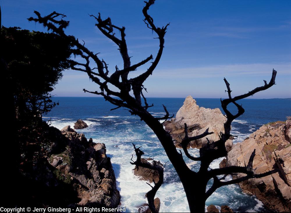 Pinnacle Cove in Point Lobos State Reserve, Big Sur, CA.
