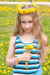 stock photo of a little girl holding dandelions