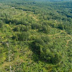43.48060, -71.15279. Birch Ridge location E. 400 feet above ground - facing south. New Durham, New Hampshire.