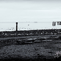 Three Crabs, Sequim, WA<br />edited 10/24/2016<br /> converted to B&W w/color spot 10/24/2016 Printed 8/04/18 signed & numbered 1/1