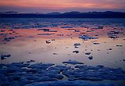 Wrangel Island sunset, open pack ice, Arctic Siberia