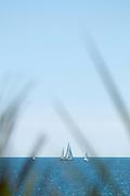 Gylly Beach sail and palms 04