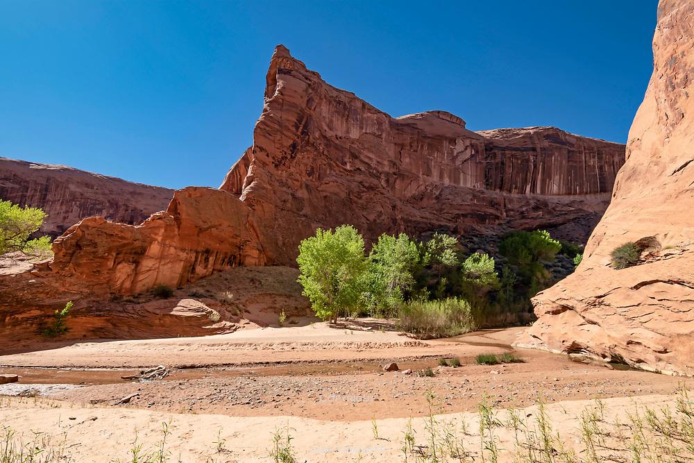 Dramatic canyon scenery.