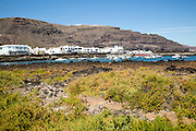 Harbour and white houses in the fishing village of Orzola, Lanzarote, Canary Islands, Spain
