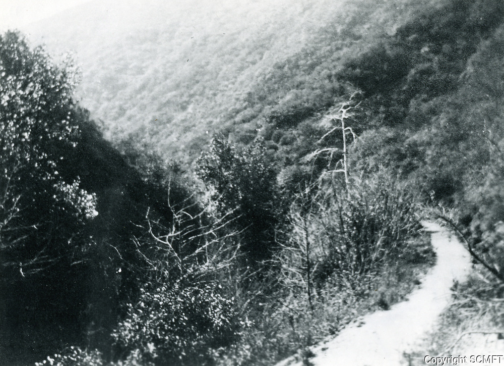 1915 Nichols Canyon