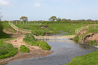 River being protected from cattle damage