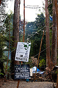 Tree house  Protest in Florentine Valley, Tasmania. These activists have setup a camp blocking a forest access road made by contractors for Forestry Tasmania, in order to stop the logging of old growth forest in what is potentially a World Heritage Area.
