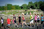 Rotterdam Runningcrew in diergaarde blijdorp