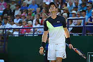 Andy Murray of Great Britain during the Nature Valley International at Devonshire Park, Eastbourne, United Kingdom on 27 June 2018. Picture by Martin Cole.