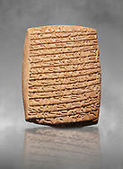 Hittite cuneiform tablet. Adana Archaeology Museum, Turkey. Against a grey art background .<br /> <br /> If you prefer to buy from our ALAMY STOCK LIBRARY page at https://www.alamy.com/portfolio/paul-williams-funkystock/hittite-art-antiquities.html . Type - Adana - in LOWER SEARCH WITHIN GALLERY box. Refine search by adding background colour, place, museum etc.<br /> <br /> Visit our HITTITE PHOTO COLLECTIONS for more photos to download or buy as wall art prints https://funkystock.photoshelter.com/gallery-collection/The-Hittites-Art-Artefacts-Antiquities-Historic-Sites-Pictures-Images-of/C0000NUBSMhSc3Oo