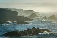 Coastal rocks and fog at Jug Handle State Natural Reserve, Mendocino County coast, California