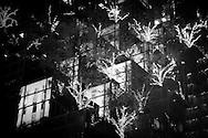 New York. Fifth avenue . mirror games  on the Trump tower. - United states  Manhattan /reflets   sur le trump tower  New york - Etats unis