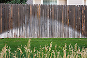 The wet imprints of water sprinklers against a wooden fence explain the green manicured lawn  outside a housing development in Boulder, Colorado. The watering of non-native bluegrass, sparkling against naturally brown surroundings, is responsible for half of all domestic water consumption.