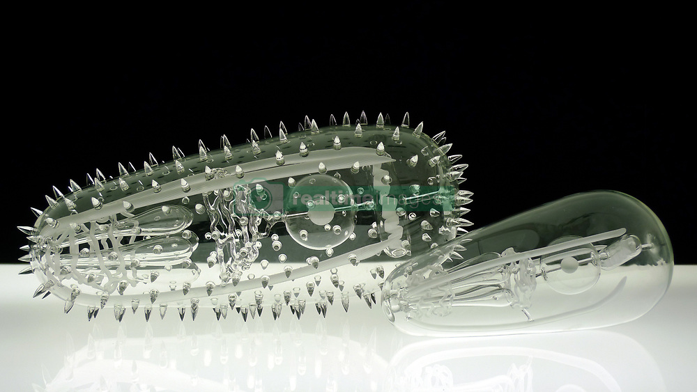"""IN PHOTO: Malaria<br /> <br /> Internationally-renowned British artist Luke Jerram has created a coronavirus glass sculpture in tribute to the huge global scientific and medical effort to combat the pandemic.<br /> <br /> Made in glass, at 23cm in diameter, it is 1 million times larger than the actual virus. <br /> <br /> It was commissioned 5 weeks ago by a university in America to reflect its current and future research and learning in health, the environment and intelligent systems, and its focus on solving global challenges.  <br /> <br /> Luke says: """"Helping to communicate the form of the virus to the public, the artwork has been created as an alternative representation to the artificially coloured imagery received through the media. In fact, viruses have no colour as they are smaller than the wavelength of light."""" <br /> <br /> """"This artwork is a tribute to the scientists and medical teams who are working collaboratively across the world to try to slow the spread of the virus. It is vital we attempt to slow the spread of coronavirus by working together globally, so our health services can manage this pandemic."""" <br /> <br /> Made through a process of scientific glassblowing, the coronavirus model is based on the latest scientific understanding and diagrams of the virus.  <br /> <br /> Profits from this glass model are going to Médecins Sans Frontières (MSF) who will be assisting developing countries deal with the fallout of the coronavirus epidemic. <br /> <br /> This new model is just the latest in Luke's Glass Microbiology series of virus sculptures. Luke and his glassblowing team have, in the past, made other sculptures of viruses from swine flu and Ebola to smallpox and HIV.<br /> <br /> Respected in the scientific community, the glass sculptures have featured inThe Lancet,Scientific American,British Medical Journal (BMJ)and on the front cover ofNature Magazine.  <br /> <br /> TheGlass Microbiologysculptures are in museum collections around the world, incl"""