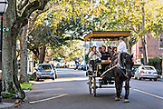 Horse drawn carriage tour along Meeting Street in historic Charleston, South Carolina.