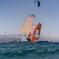 2021-06-03 Rif Raf, Eilat