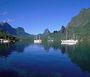 Cook's Bay, Moorea, French Polynesia<br />