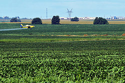 A small single seater propeller airplane is used to dust or crop dust fields of grain with insecticide to reduce infestations and increase yields.