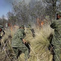 Toluca, México.- Elementos del Ejercito Mexicano, de Probosque y 30 brigadistas de Santiago Tlacotepec  sofocaron un incendio que se registro en la zona de esta delegación cerca de las faldas del Volcán Xinantecatl, más de 100 hectáreas de bosque fueron consumidas por el fuego.  Agencia MVT / Crisanta Espinosa