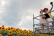 A couple take a selfie with a smart phone camera at the Zama sunflower festival (Hi-mawari matsuri) in Zama, Kanagawa, Japan. Sunday August 16th 2015 In July and August many visitors come to rural Kanagawa to enjoys the fields of bright yellow sunflowers. Over half a million flowers bloom here each summer.