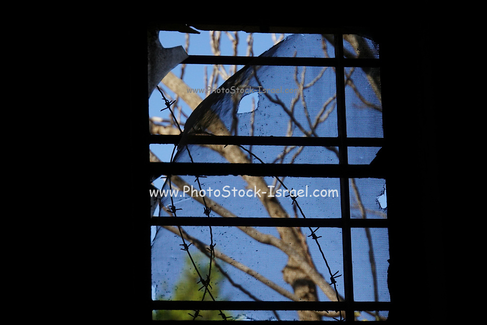 A window in a dark room looking out to the outside world