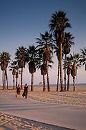 Two women walking on palm tree lined path next to sand beach on coast at Santa Monica, California