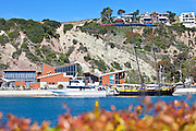 Dana Point Marine Ocean Institute