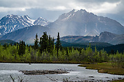 Sanctuary River, Alaska Range. Denali National Park, Alaska, USA. At 20,310 feet elevation or 6191 m, the peak of Denali (previously known as Mount McKinley) is the highest mountain in North America. When measured from its base, it is earth's tallest (most prominent) mountain on land. Denali is a granitic pluton uplifted by tectonic pressure while erosion has simultaneously stripped away the softer surrounding sedimentary rock.