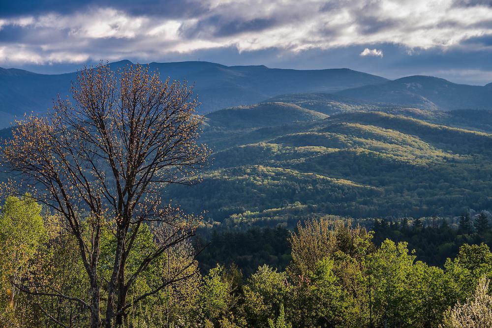 Spring green treeline and views of mountain ridgelines, Campton, NH