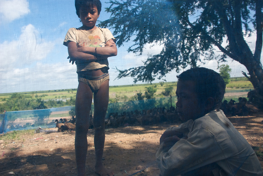 An eleven-year old boy (left) rests at a duck farm where he works after his mother pulled him out of school in Siem Reap, Cambodia and sent him to the farm  in a village at the base of Phnom Krom because he was not performing in class and the family needed the extra income.  A son of the duck farmer (right) rests with him; he has never attended school.