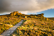 Flagstone pathway leading to Roach End's gritstone features, bathed in autumnal evening light. South-Western flank of the Peak District National Park, Staffordshire, England, UK. October. Autumn.