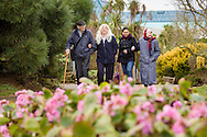 EMBARGOED 00:01 Wednesday 22nd February; 2017.<br /> <br /> Residents and carers from Chestnut View care home near the seafront in Southsea, Hampshire. They are amongst the first of 100,000s of old and vulnerable people to enjoy new Out and About excursions after Oomph! announces nationwide expansion plans today (Wednesday 22nd February).<br /> Out and About tackles a lack of outings for people in care settings due to social care funding cuts. Innovative model offers economies of scale on excursion planning, transport and conductors across care settings in an area.<br /> 80 Out and About minibuses will hit the road in first year thanks to £1.5million investment from Mike Parsons, Care and Wellbeing Fund and Nesta Impact Investments.<br /> Photograph by Christopher Ison ©<br /> 07544044177<br /> chris@christopherison.com<br /> www.christopherison.com