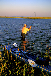Stock photo of a man standing in the water near shore and casting his rod