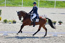 Forsberg Christoffer, SWE, Hippo's Sapporo<br /> FEI EventingEuropean Championship <br /> Avenches 2021<br /> © Hippo Foto - Dirk Caremans<br />  23/09/2021