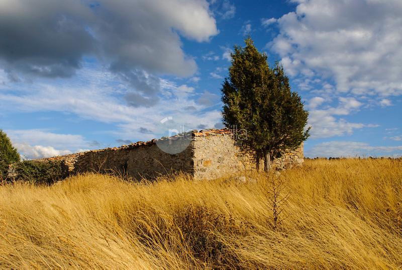 Villar de Cobeta.Parque Natural del Alto Tajo.Guadalajara ©Antonio Real Hurtado / PILAR REVILLA
