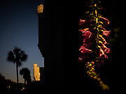 In a diptych, the sun sets over The Citadel and Hampton Park in Charleston, South Carolina on Thursday, January 14, 2021.