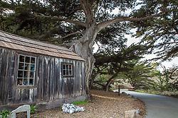 Whalers shack, Point Lobos, Carmel California
