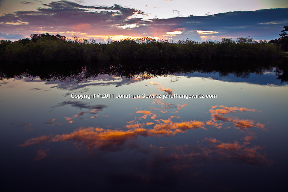 The morning sky reflects on the surface of a pond located near the beginning of the Anhinga Trail in Everglades National Park. WATERMARKS WILL NOT APPEAR ON PRINTS OR LICENSED IMAGES.