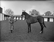 13/02/1953<br />
