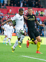 Football - 2016 /2017 Premier League - Swansea City vs Manchester City<br /> <br /> Wayne Routledge of Swansea & Nicolas Otamendi of Manchester City at the Liberty Stadium.<br /> <br /> <br /> PIC COLORSPORT/WINSTON BYNORTH