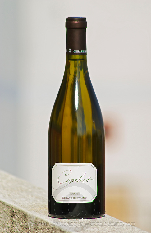 Cigalus Blanc white 2004, Gerard Bertrand, Vin de Pays d'Oc, Languedoc-Roussillon, France
