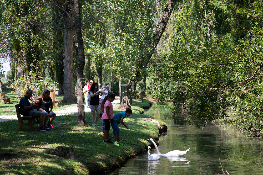 Fonti del Clitunno in Campello Sul Clitunno, Umbria, Italy. Beautiful river with natural springs appearing as an oasis of tranquility. Now very much a tourist destination, this is where Emporer Caligula came to worship the River God Clitunno and consult the ancient oracles.