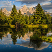 The Tetons are reflected in the water of Schwabachers Landing in Grand Teton National Park, Wyoming.
