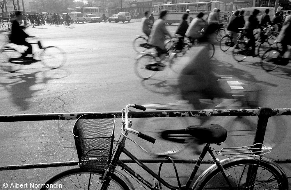 Rush Hour bicycle traffic in city