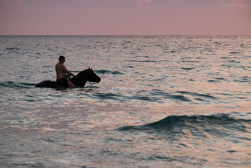 Caballero takes his horse swimming at sunset, Minorca