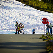 Skiers and snowboarders exit the summer snow along the road near Mount Baker Ski Area in late August.