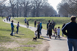 © Licensed to London News Pictures. 27/02/2021. London, UK. Members of the public exercise in a sunny Greenwich Park in South East London. The national Lockdown is expected to begin to be lifted on the 8th of March with pupils returning to schools and two members of different households allowed to meet outdoors. Photo credit: George Cracknell Wright/LNP