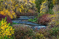 The Provo River calmly flows under a bridge surrounded by the gorgeous Fall colors in Provo Canyon.