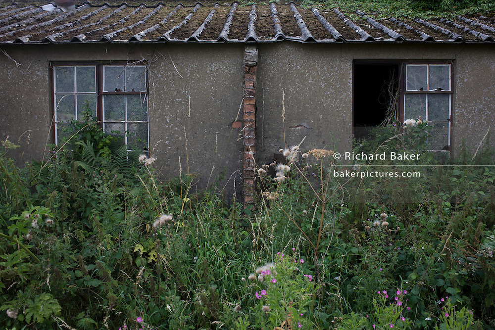 Derelict agricultural buildings in a former hospital grounds, once a wartime medical centre for the airfield at Shipdam, the home of the B-24 Liberators of the 44th Bomber Group of the US Air Force during the second world war.